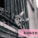 【私は私を生きる】決して不幸ではないけれど、心のコアな部分が満たされなかった。