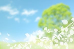 tree-leaf